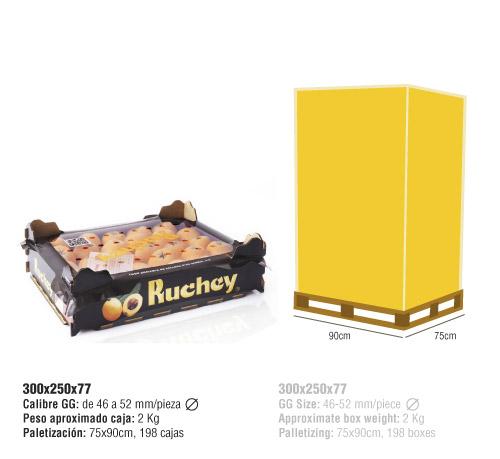 confeccion nispero Ruchey 300x250x77